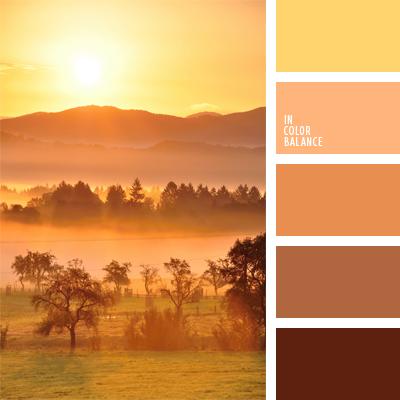 paleta-de-colores-947