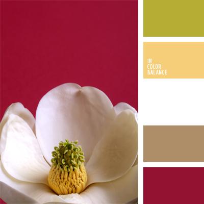 paleta-de-colores-951