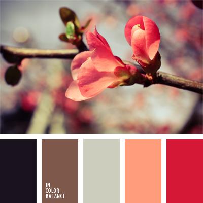 paleta-de-colores-959