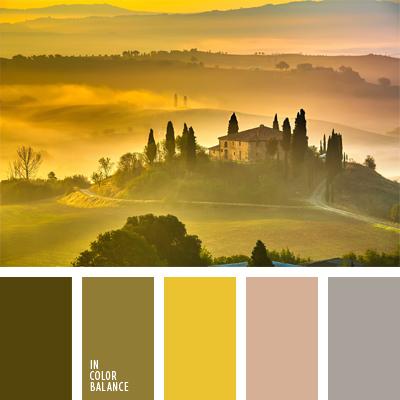 paleta-de-colores-962