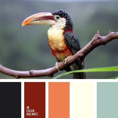 paleta-de-colores-970