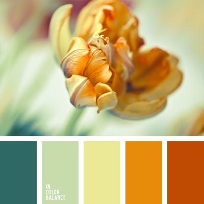 paleta-de-colores-974