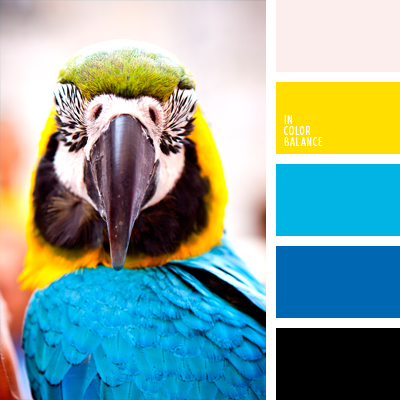paleta-de-colores-977