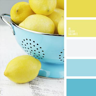 paleta-de-colores-981