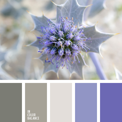 paleta-de-colores-983