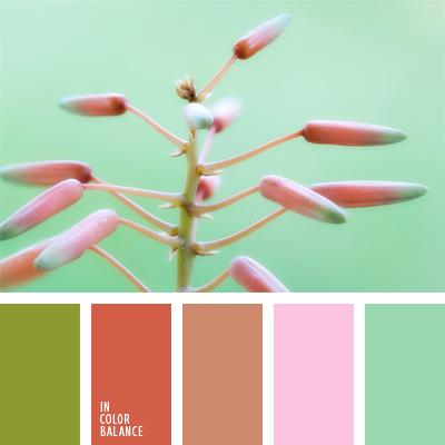 paleta-de-colores-984