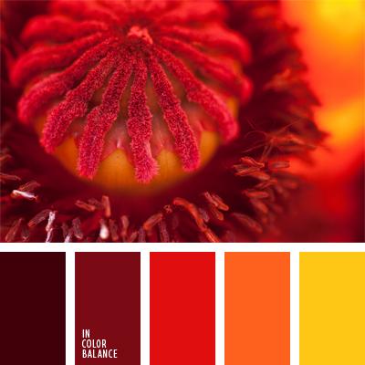 paleta-de-colores-988