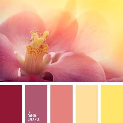 paleta-de-colores-991