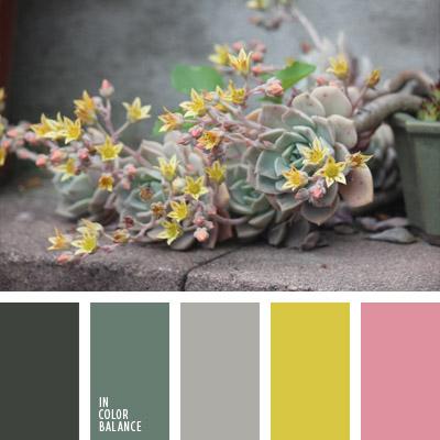 paleta-de-colores-1000