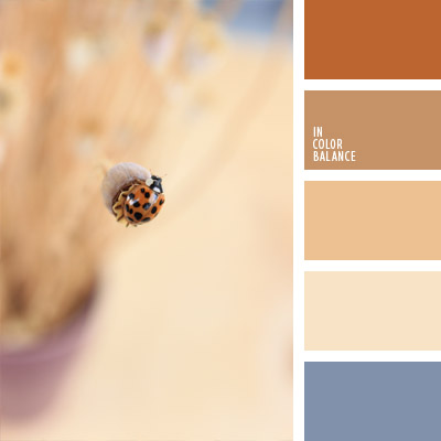 paleta-de-colores-1001