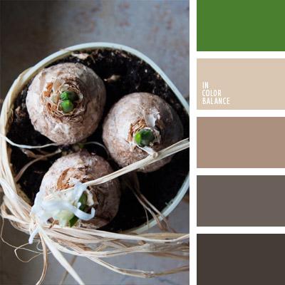 paleta-de-colores-1002