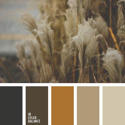 paleta-de-colores-1004