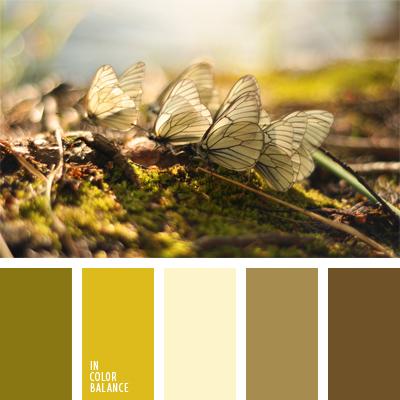 paleta-de-colores-1006