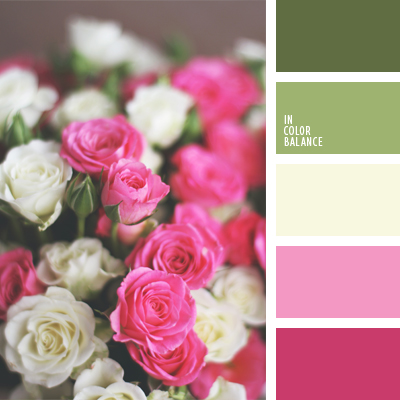 paleta-de-colores-1007