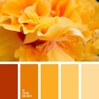 paleta-de-colores-1009