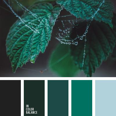 paleta-de-colores-1012