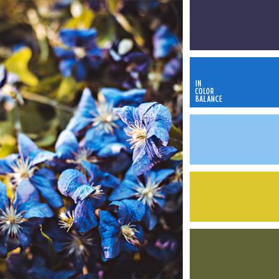 paleta-de-colores-1019