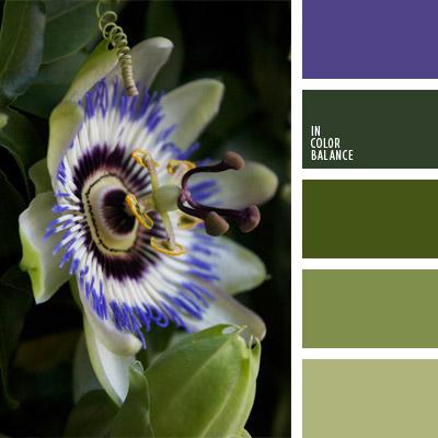 paleta-de-colores-1021