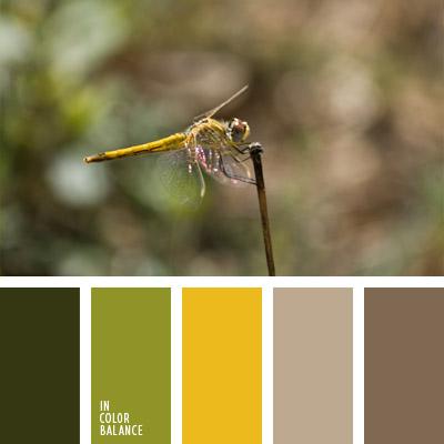 paleta-de-colores-1022