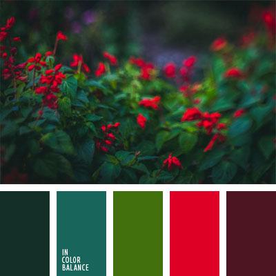 paleta-de-colores-1023