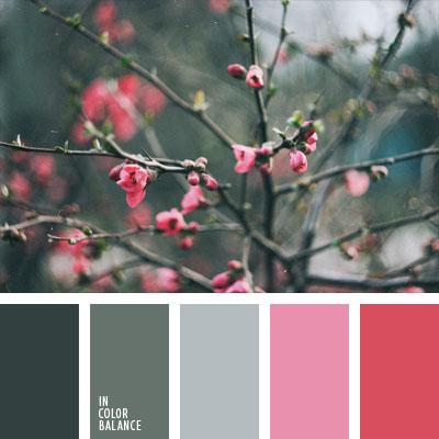 paleta-de-colores-1024
