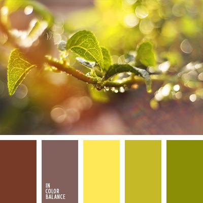 paleta-de-colores-1025