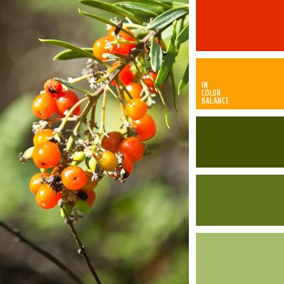 paleta-de-colores-1041