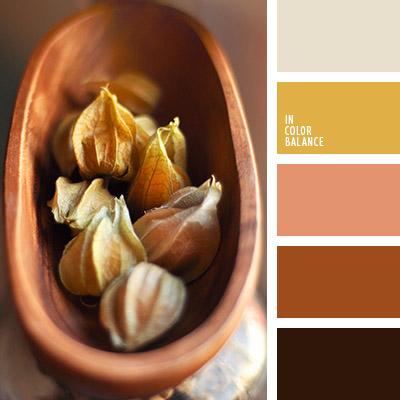 paleta-de-colores-1043