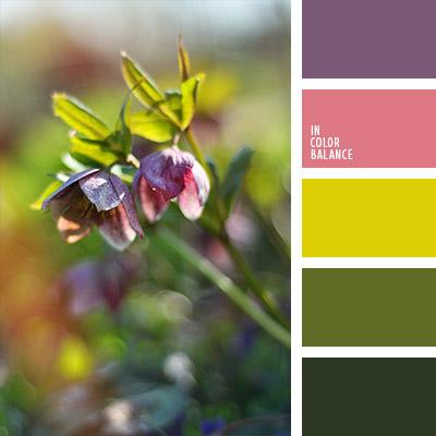 paleta-de-colores-1044