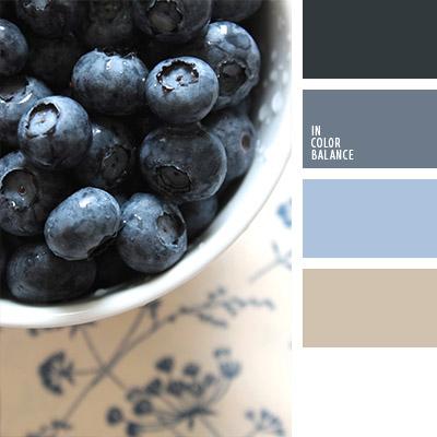paleta-de-colores-1051