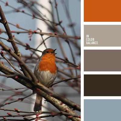 paleta-de-colores-1052