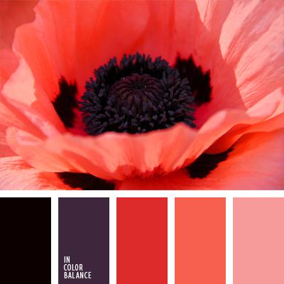 paleta-de-colores-985