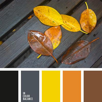 paleta-de-colores-995