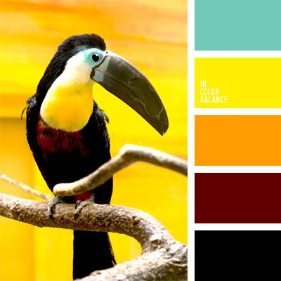 paleta-de-colores-996