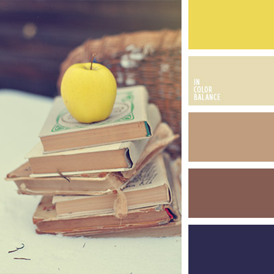 paleta-de-colores-1054