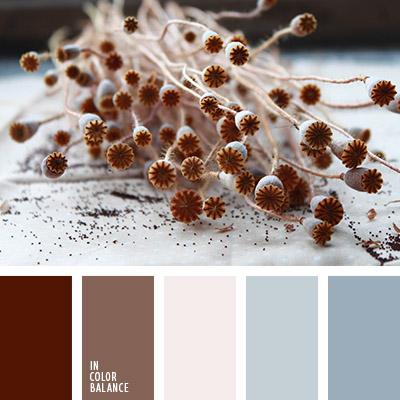 paleta-de-colores-1056