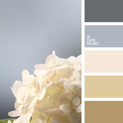 paleta-de-colores-1061