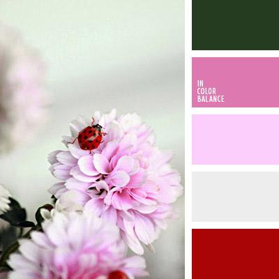 paleta-de-colores-1068