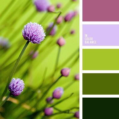 paleta-de-colores-1075