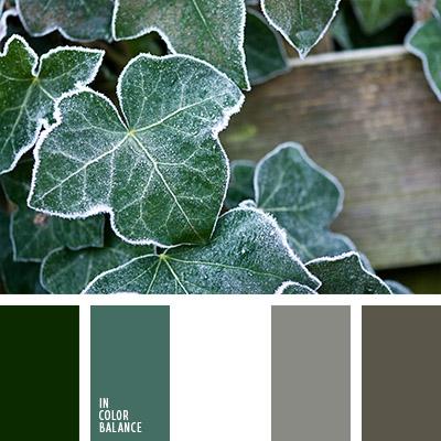 paleta-de-colores-1077
