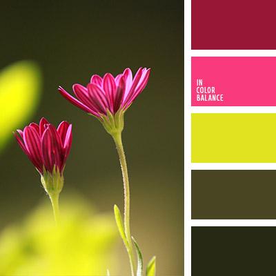paleta-de-colores-1080
