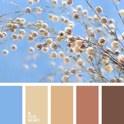 paleta-de-colores-1082
