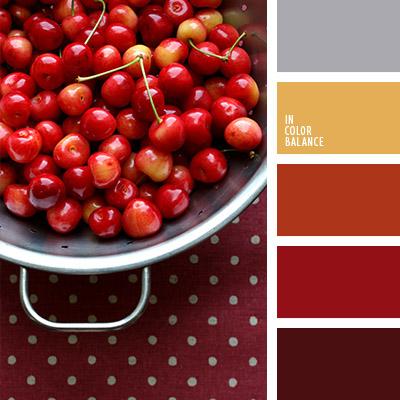 paleta-de-colores-1085