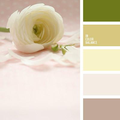 paleta-de-colores-1086