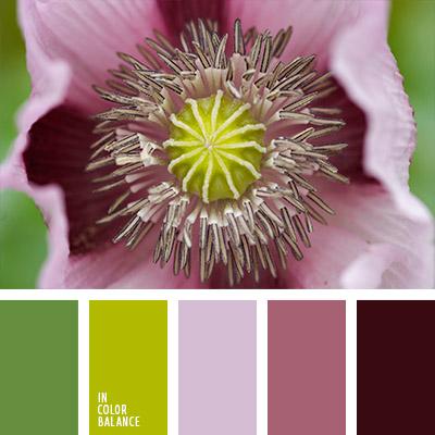 paleta-de-colores-1089
