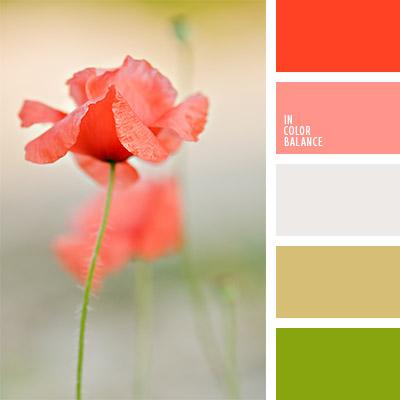 paleta-de-colores-1091