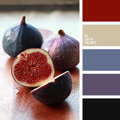 paleta-de-colores-1100