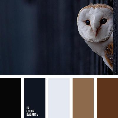 paleta-de-colores-1102