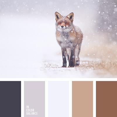paleta-de-colores-1107