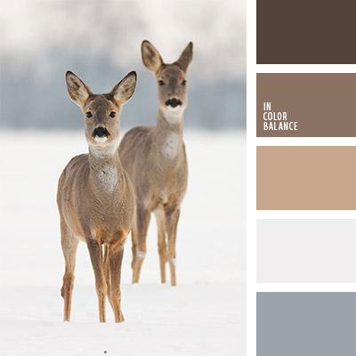 paleta-de-colores-1109